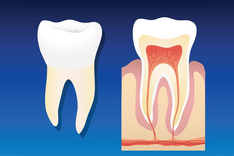 Gum Illness and Treatment